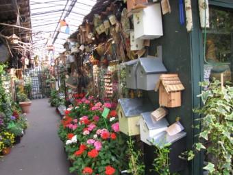 marché aux fleurs, paris,