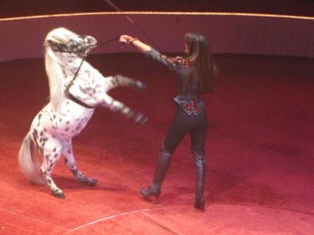 1301 Un jour au cirque (2).jpg